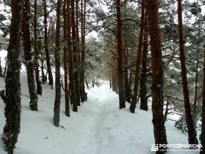 Raquetas de Nieve - Puerto de Cotos; club de viajes; caminos y senderos;rutas para hacer senderismo